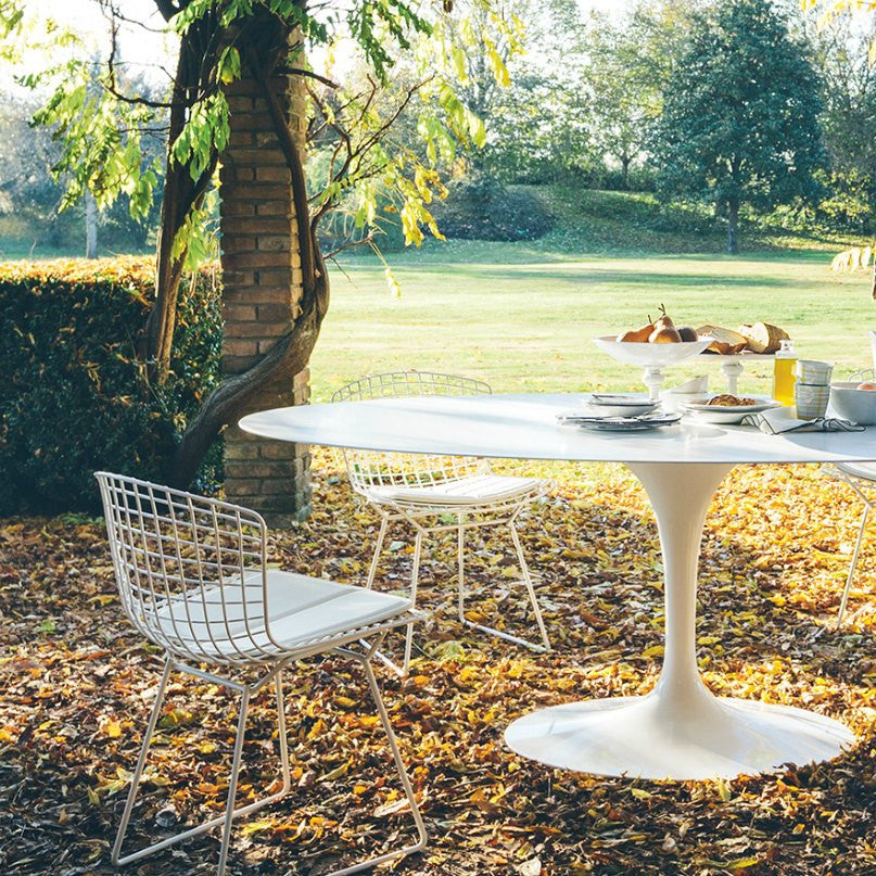Harry Bertoia Side Chairs White Oval Tulip Dining Table Outdoors Knoll