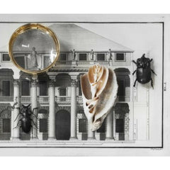 Pallina Magnifying Glass for Skultuna by Olivia Herms