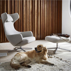 Vitra Grand Repos by Antonio Citterio in living room with Golden Retriever and Violin