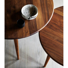 Wegner CH008 Coffee Tables by Carl Hansen and Son Top Detail