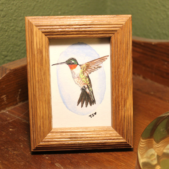 Framed Hummingbird Watercolor Art