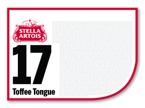 2020 Stella Artois Caulfield Cup Members' Saddlecloth #17 Toffee Tongue (NZ)