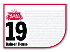 2020 Stella Artois Caulfield Cup Members' Saddlecloth #19 Raheen House (IRE)