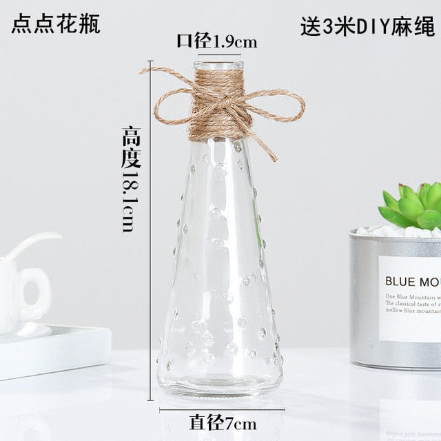 Transparent Water Hydroponics Flower Vases