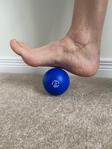 Therapeutic Exercise/Massage Ball