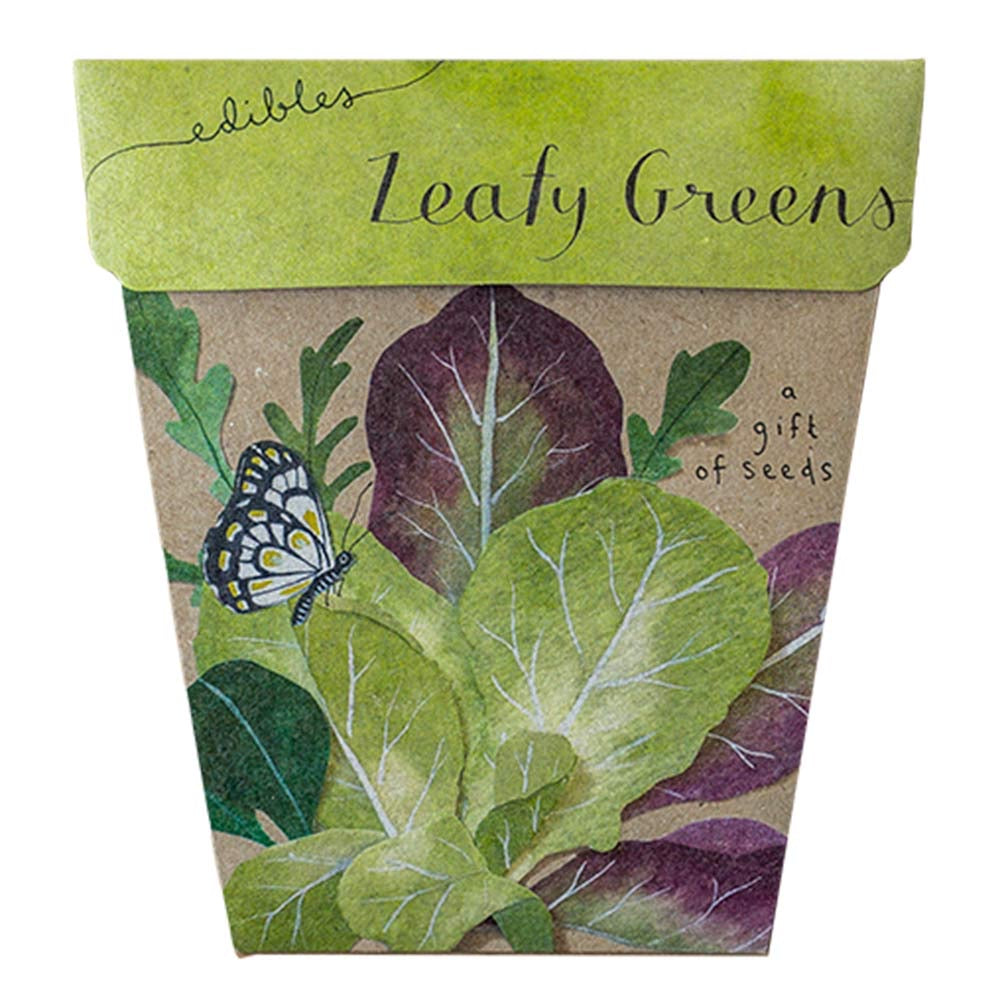 Leafy green gift of seeds