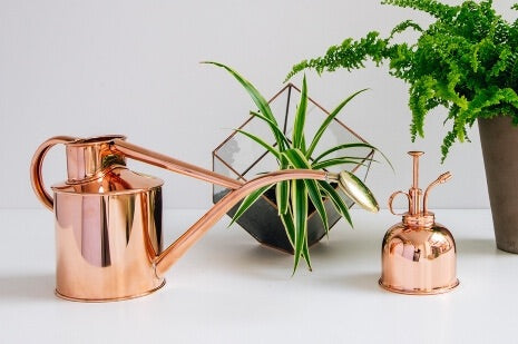 Copper watering can and mister