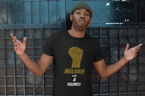 Curated Culture - Melanin is not a Felony Tee