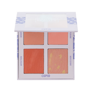 Mini Blush Palette