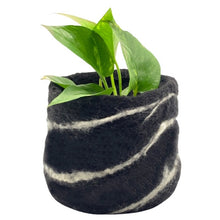 Load image into Gallery viewer, Black & White Stripe Felt Pot