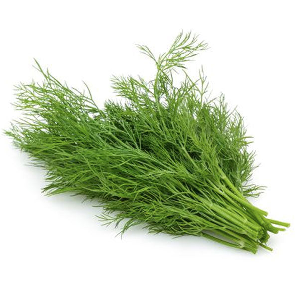 Dill Fresh Cut, 0.75 oz - Water Butlers