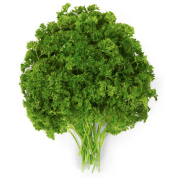 Curley Parsley, bunch - Water Butlers