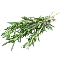 Rosemary Fresh Cut, 0.75 oz - Water Butlers