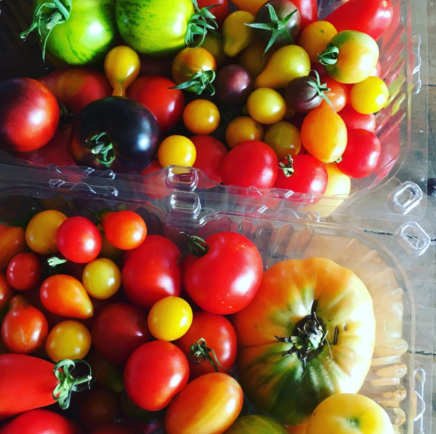 Heirloom Tomatoes - Organically Grown (By the Pound)