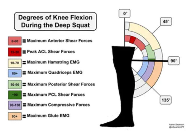 Degrees of Knee Flexion During the Deep Squat