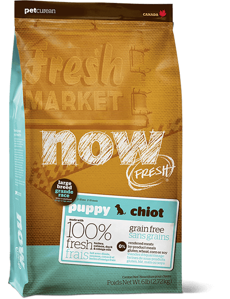 Now Fresh - Grain Free - Puppy - Large Breed