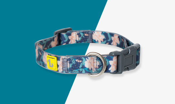 Be One Breed - Silicone Collar - Autumn Flowers
