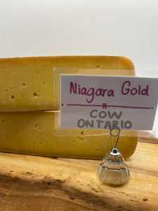 Niagara Gold (cow) 🇨🇦
