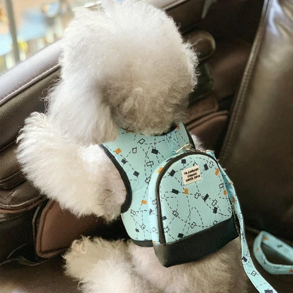 Luxury Dog Harness Back Pack