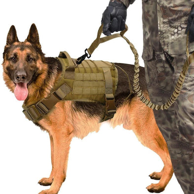 Military Dog Harness Set