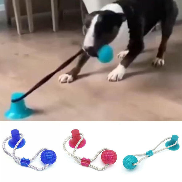 Interactive Suction Cup Dog Toy