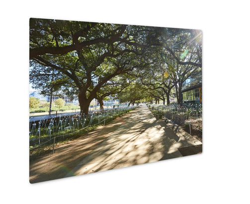Metal Panel Print, Houston Discovery Green Park In Downtown Texas - Life Relevance