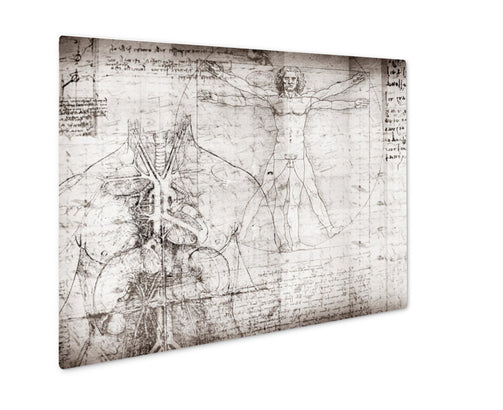 Metal Panel Print, Vitruvian Man - Life Relevance