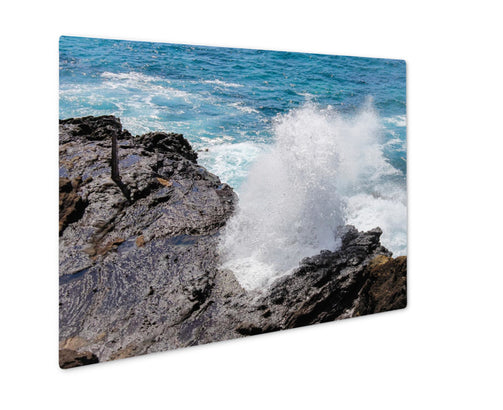 Metal Panel Print, Close Up Image Of The Famous Halona Blowhole Oahu Hawaii - Life Relevance