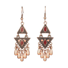 Load image into Gallery viewer, Exotic Earrings in many variants