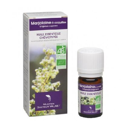 He Marjolaine A Coquilles 5ml Cosbionat