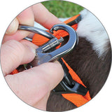 MIRO & MAKAURI Carabiner nylon Dog Walking Lead with padded Handle