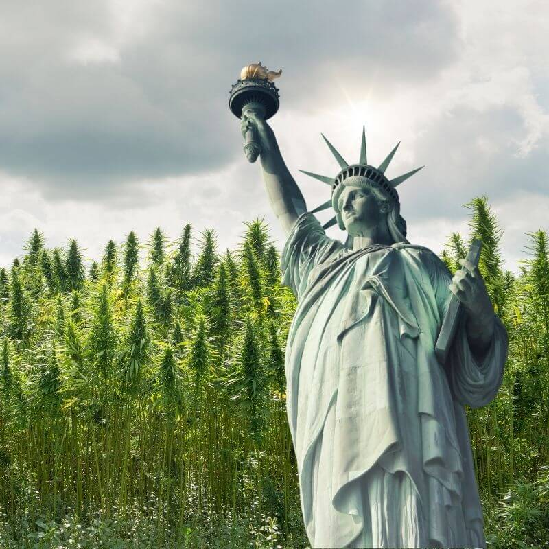 states where weed is legal