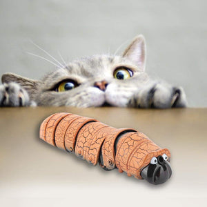 Dog & Cat Electric Bug Toy
