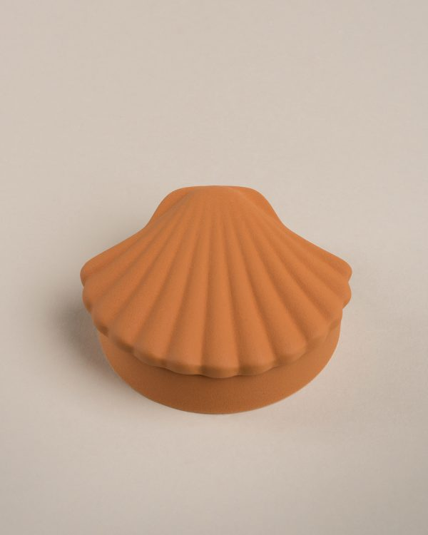 Amber Seashell Box - Los Objetos Decorativos