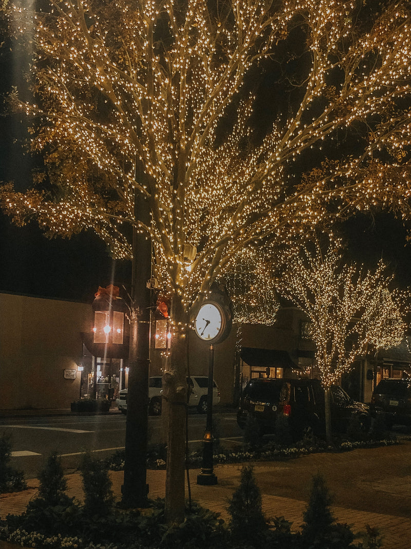Fairhope Christmas Gift Guide