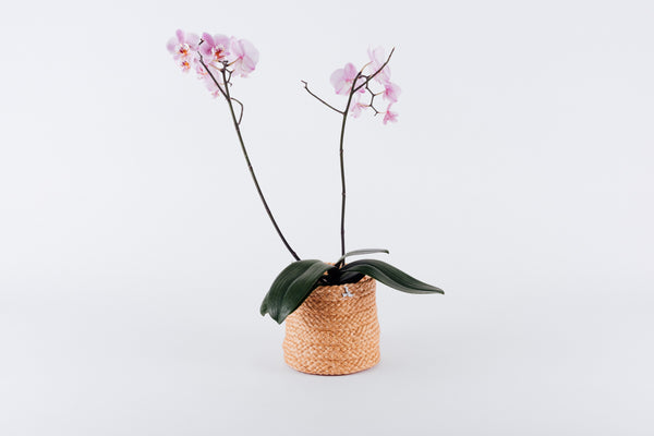 Small Henequen flower Pot