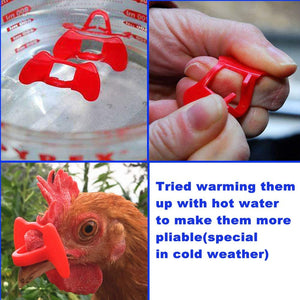 20PCS Pinless Chicken Glasses Anti-Pecking (BUY 2 FREE SHIPPING)