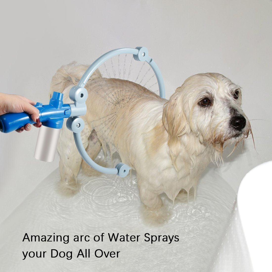 360 Degree Water Jets Pet Clean - Carrywon