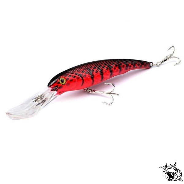 Leurre Big Minnow | FishXper