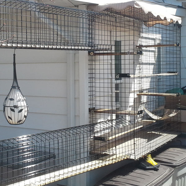Habitat Haven Durable Attractive Catios For Every Budget