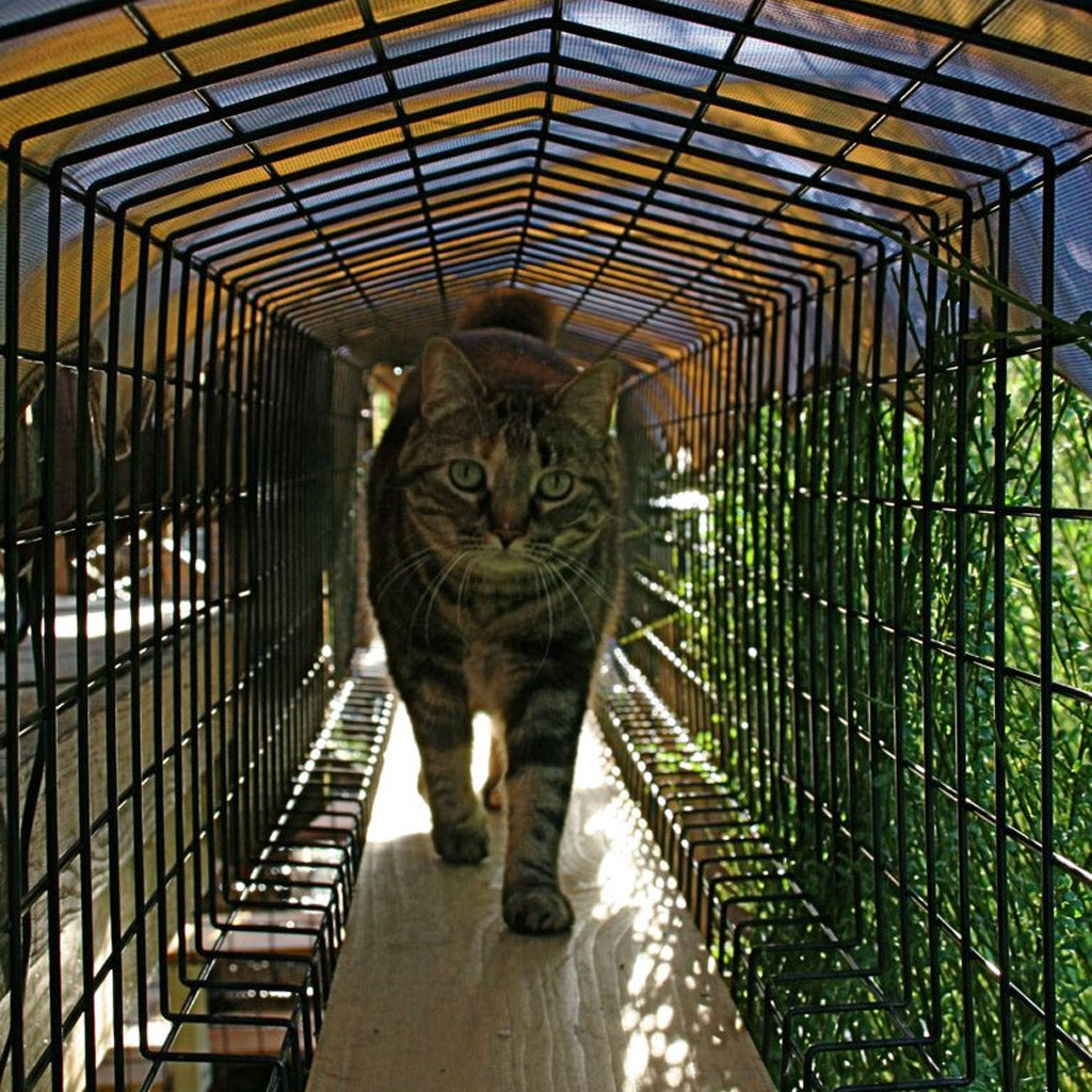 Awnings For Catio Tunnels - Habitat Haven