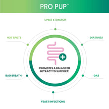 Load image into Gallery viewer, Diagram of Pro Pup gi tract support