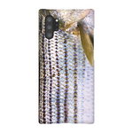 Real Striped Bass Phone Case
