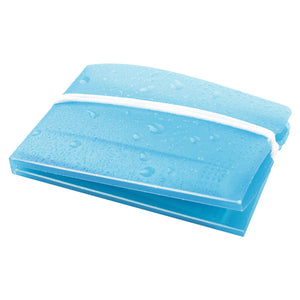 Carrying Case for 3-ply Mask