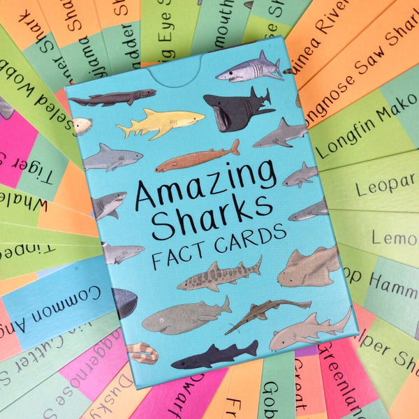 Amazing Sharks Fact Cards