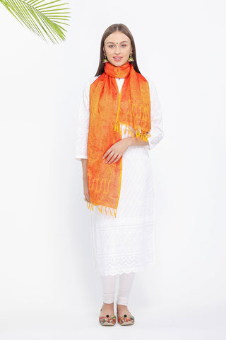 Banarasi Silk Scarf - The Pashm