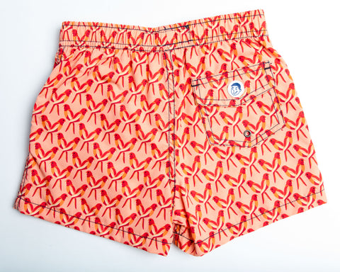 Jr. Swim - Kids Swim Trunks - Peach Parrots