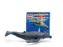 Load image into Gallery viewer, Tonie - HOW AND WHY - Whales and Dolphins & Secrets of the Deep Sea