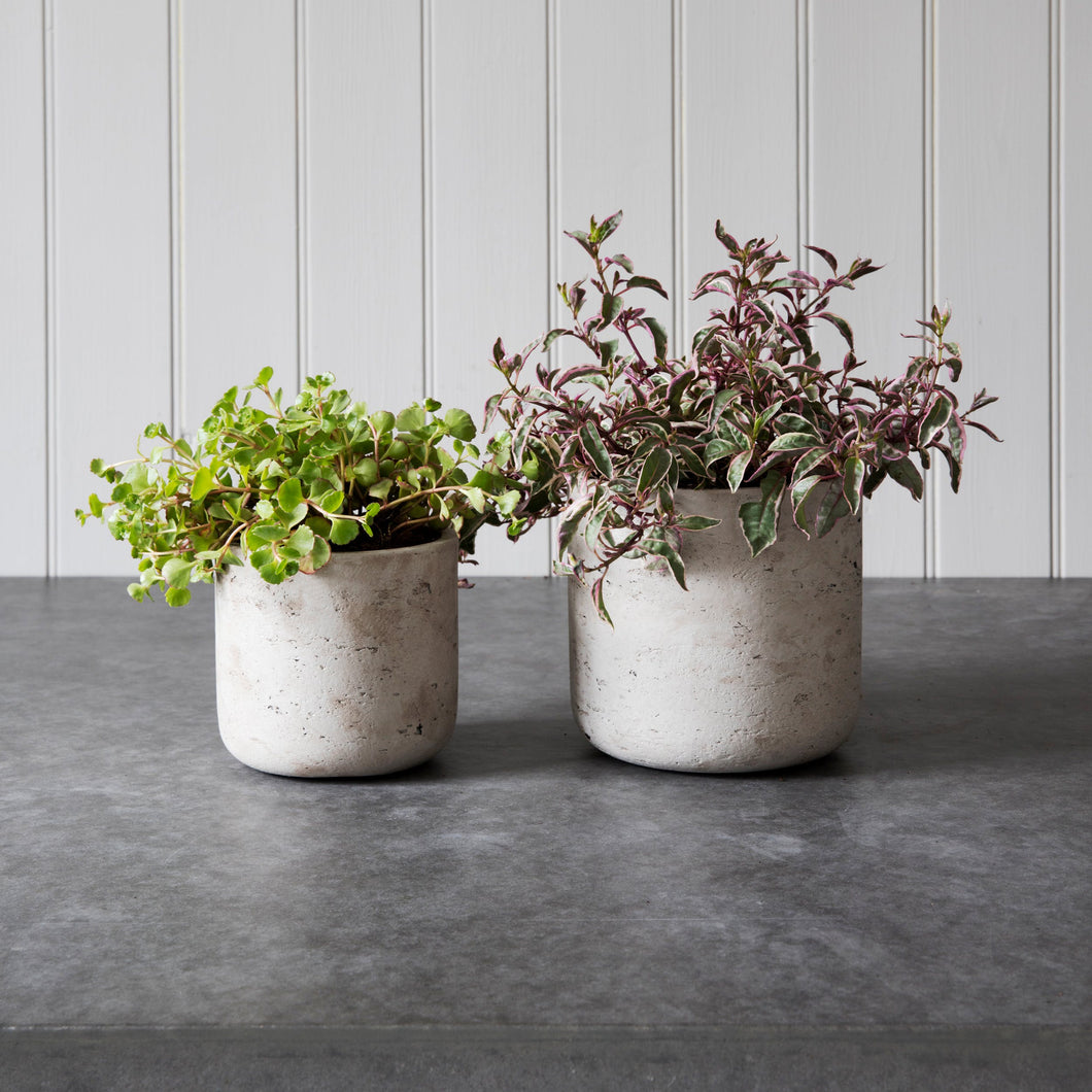 Set of 2 Cement Plant Pots in Stone