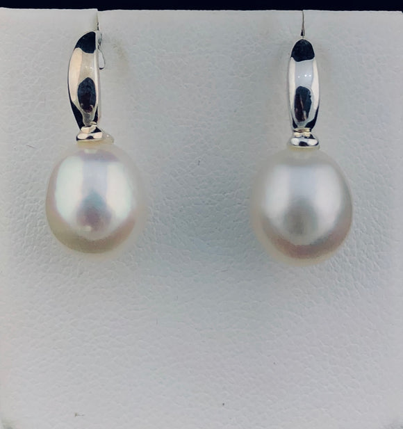 Freshwater Pearl Earrings   EWP 458